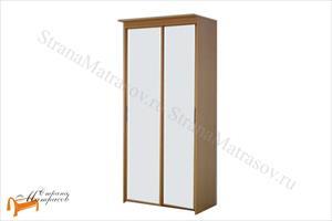 Орматек - Шкаф 2-х дверный - купе Эконом (глубина 450мм) с 2 зеркалами