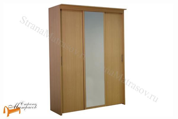 Орматек -  Шкаф - купе Эконом 3-х дверный (глубина 450мм) с 1 зеркалом