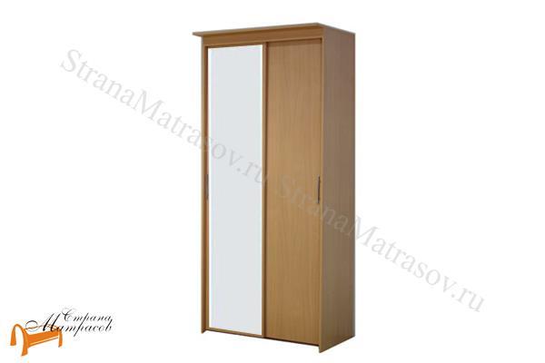 Орматек -  Шкаф-купе Эконом 2-х дверный (глубина 450мм) с 1 зеркалом