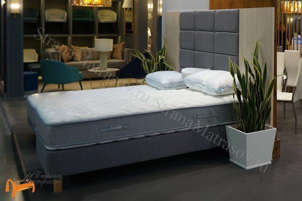Орматек Основание для кровати Motel Home для гостиниц и пансионатов (для дома) с ножками , кровать мотел хоум, без изголовья, для отеля