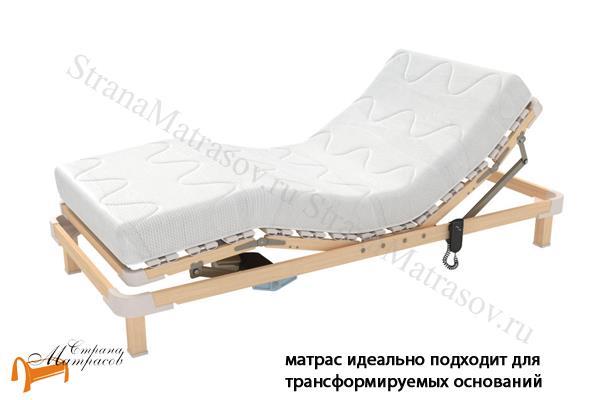 Райтон Ортопедический матрас Гербера