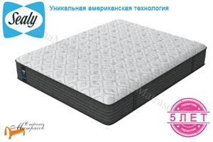 Sealy (США) - Матрас Posture Plus Firm Black Edition
