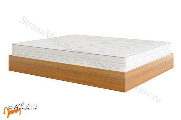 DreamLine Кровать Куб с подъемным механизмом , без изголовья, куб, млпд, бук, ясень